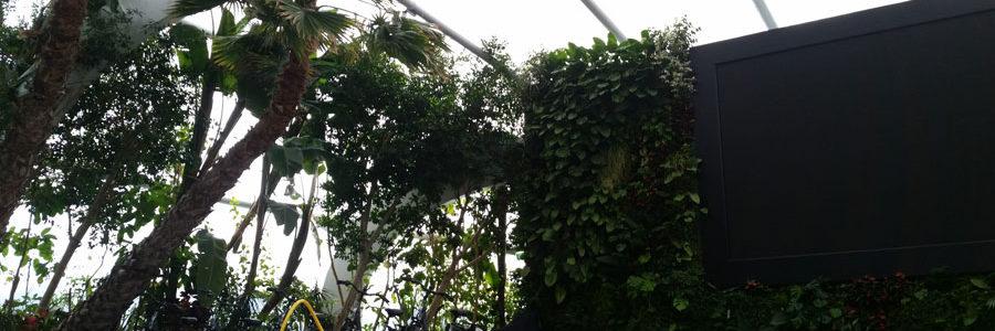 Il comfort termico nelle strutture in ETFE